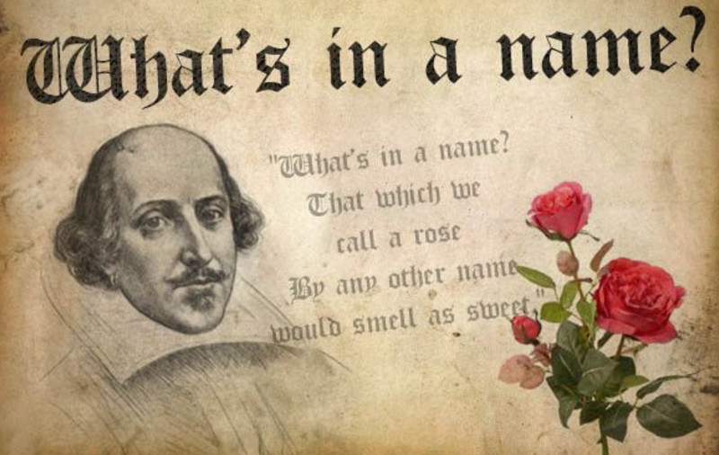 Whats in a name Shakespeare